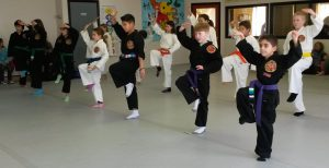 FB Karate kids wellness aquidneck island newport middletown portsmouth